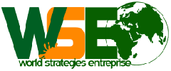 WORLD STRATEGIES ENTREPRISE